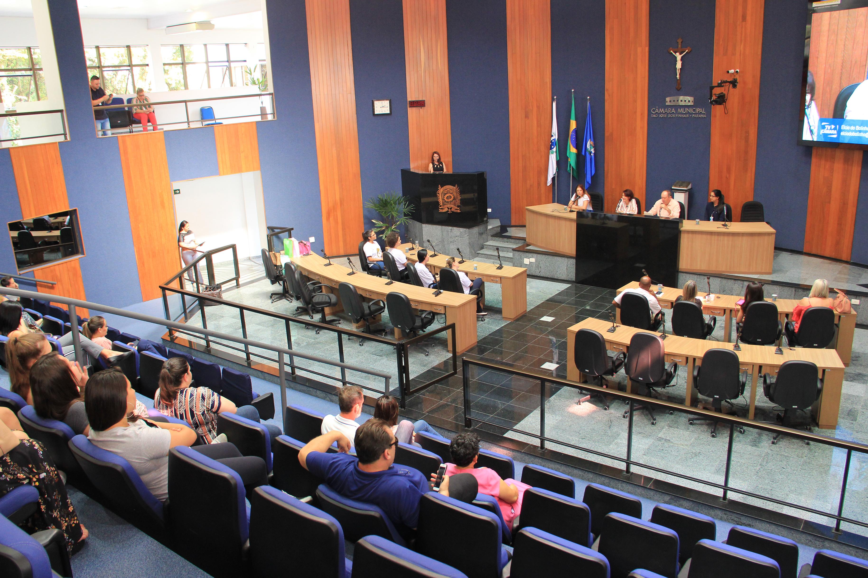Câmara realiza abertura da Semana Municipal de Conscientização de Cuidados da Gestante